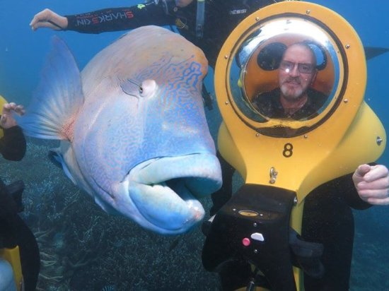 Green Island, Australia: Riding Suba Doo on trip to outer barrier reef - fantastic experience.