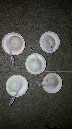 Natural Ice Cream Parlour: 5 different flavours