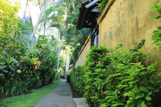 Villa Coco Picture