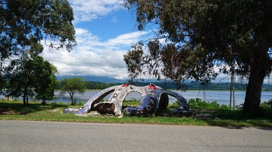 "Pitsunda, Georgia: Пицунда. Озеро Инкит, остановка ""Осьминог"""