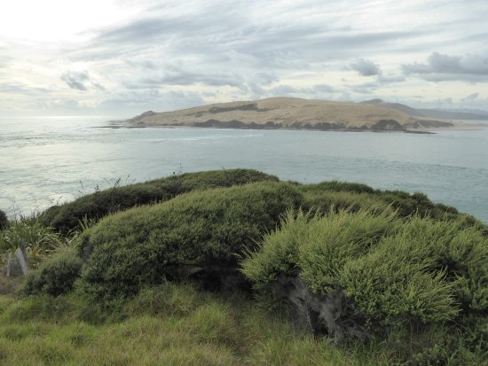 Omapere, New Zealand: View from the historic Pilot Station site across Hokianga Harbour entrance