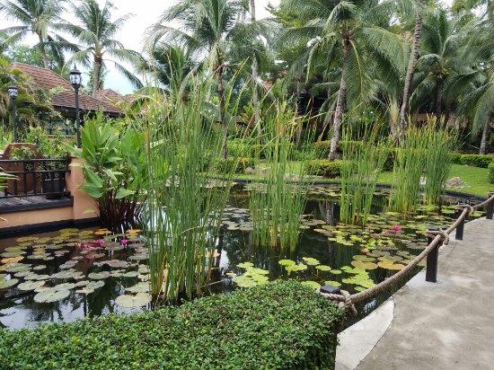 Bo Phut Resort & Spa: 20160617_062749_large.jpg