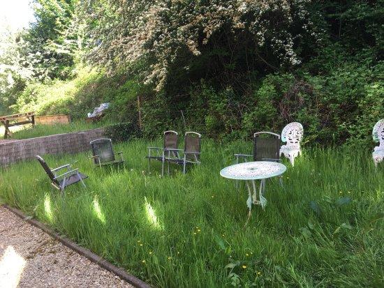Aberdare, UK: back garden