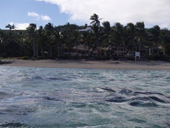 بيدارا بيتش إن: Bedarra Beach Inn from lagoon