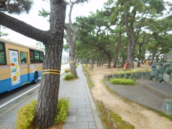 Ashiya Park: 芦屋公園