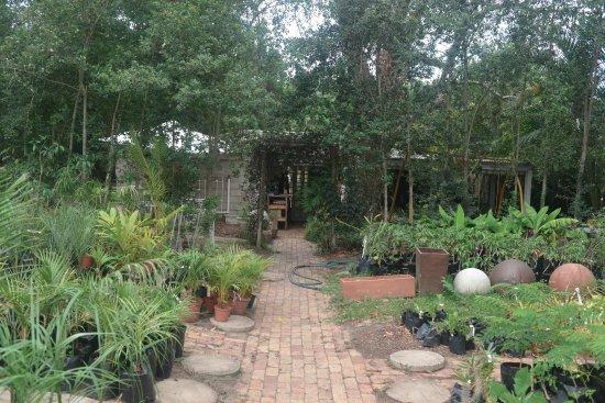 Veranda Cafe: Garden Centre