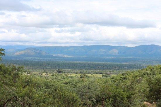 Mabula Game Lodge: View of the bushveld