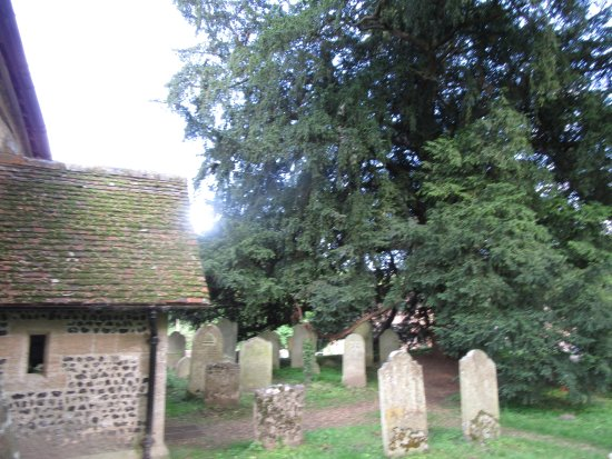 Corhampton Saxon Church