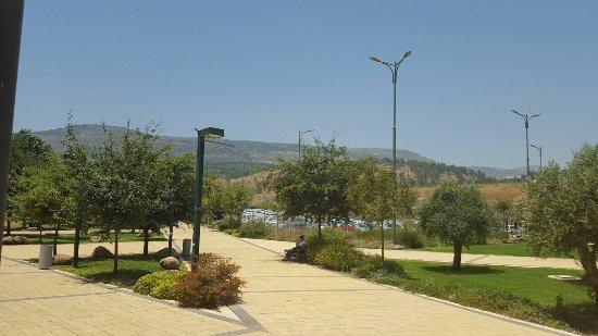 Tel-Hai