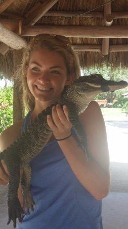 Gator Park: Holding the baby gator.