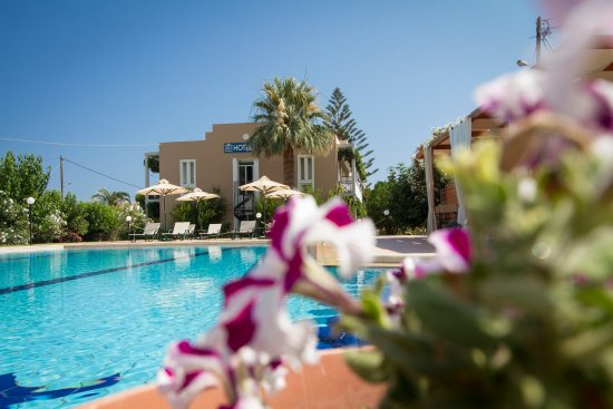 Hotel Peli: Relax in the pool