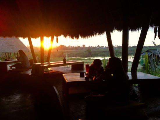Bali Green Life