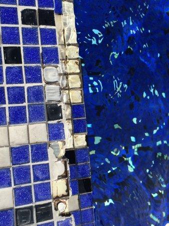 Bayerischer Hof Hotel: Mosaik am Pool