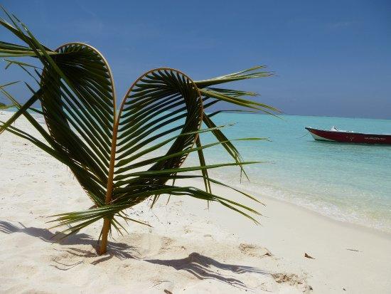 Una vacanza stupenda.... sole, mare, spiaggia, stelle... tutto quello che serve per rilassarsi