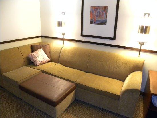Hyatt Place Dublin/Pleasanton: Sofa sleeper