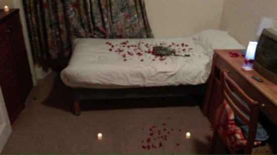 Mackay's Hotel: Rose petals and candles courtesy of my darling boyfriend <3