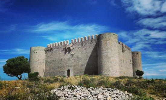 Castle of Montgri