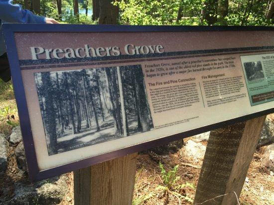 Preacher's Grove : Preachers Grove sign
