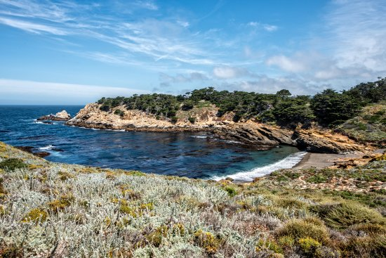 Point Lobos State Reserve: Whalers Cove