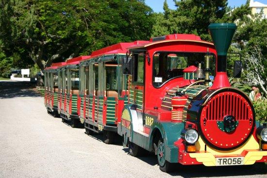 The Bermuda Train Company