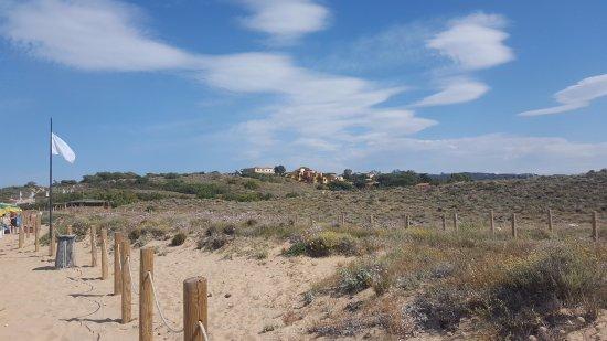 Hotel Le Dune: La vista dalla spiagga sull hotel