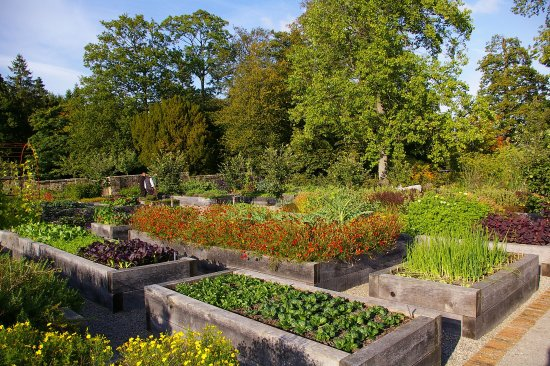 High Quality Rudding Park Hotel: Hotel Kitchen Garden