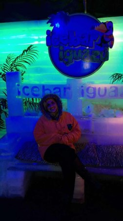 Icebar Iguazú: banco de gelo