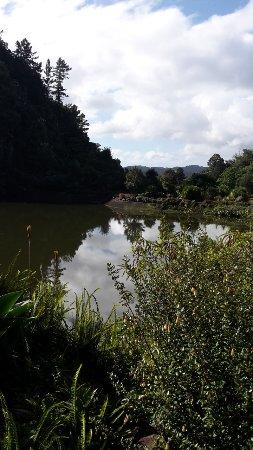 Foto de Whangarei