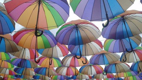 Znalezione obrazy dla zapytania parasolki