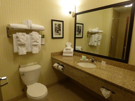 Comfort Suites Hotel & Convention Center Rapid City: Plenty of counter space