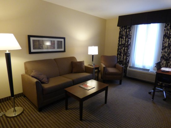 Comfort Suites Hotel & Convention Center Rapid City: Living room area