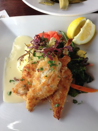 Picture of fish hopper monterey tripadvisor for Sand dabs fish