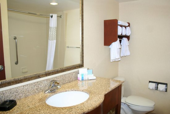 Hampton Inn & Suites Alexandria Old Town Area South: Standard Bathroom