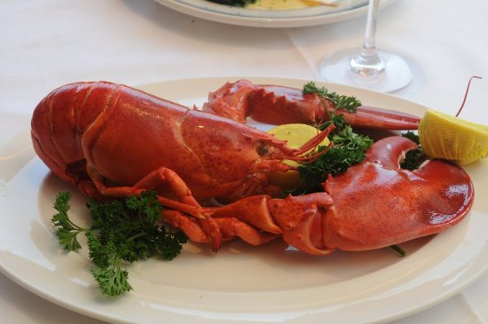 Roslyn, NY: Delicious Lobster