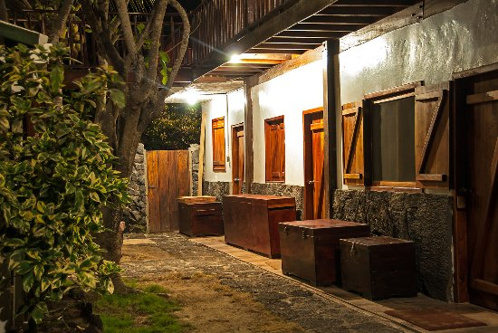 The Wooden House Lodge: zonas comunes
