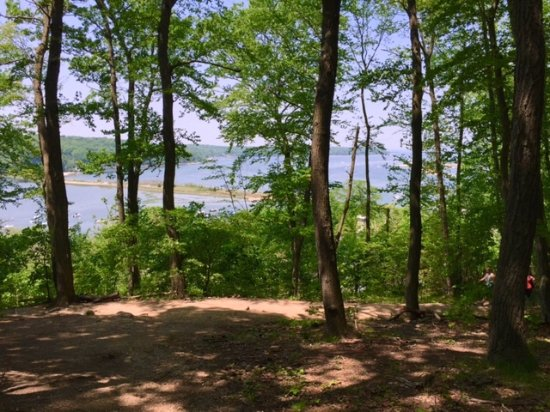 Cold Spring Harbor, estado de Nueva York: Cool off in the shade and take in the view of the harbor