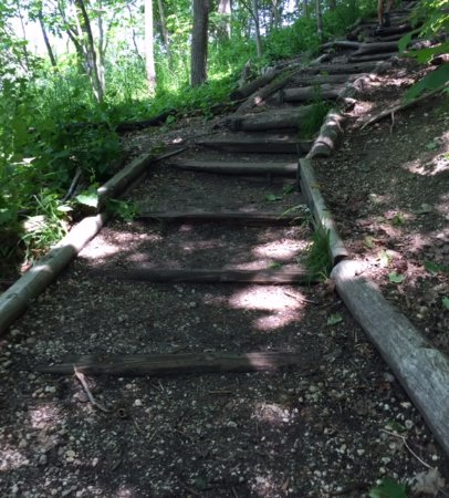 Cold Spring Harbor, estado de Nueva York: Well-maintained trail
