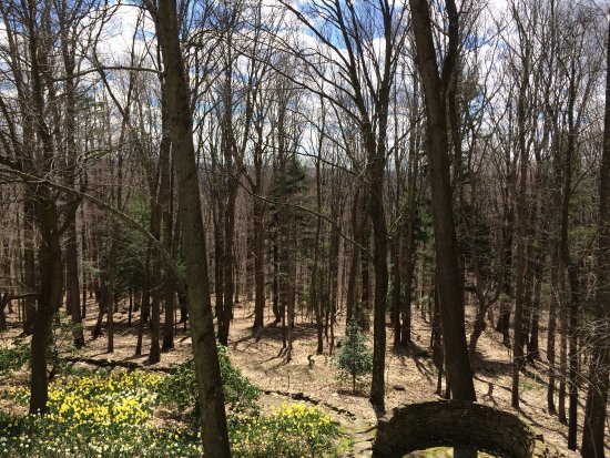 Chalk Hill, PA: View from Kentuck Knob
