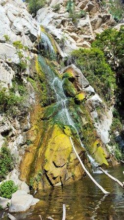 Big Santa Anita Canyon: Sturtevant Falls #lovz2hike