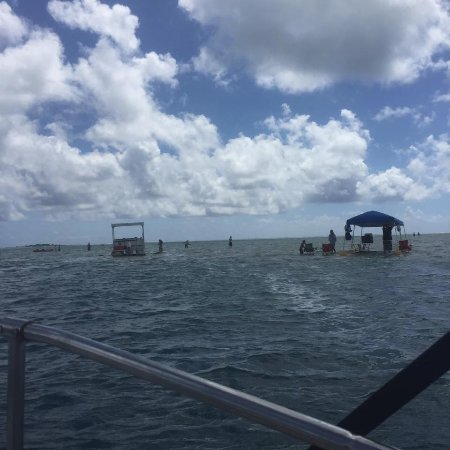 Kaneohe Bay Private Charters: sand bar