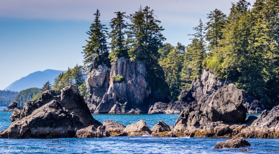 Archipelago Wildlife Cruises: Returning to ucluelet