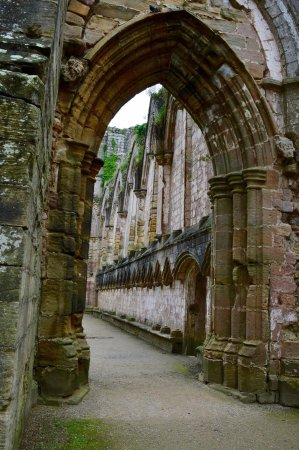 Fountains Abbey and Studley Royal Water Garden: Inside Fountains Abbey