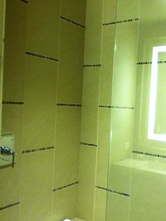 Omni Dallas Hotel: Huge shower with open construction