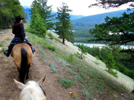 Jasper Riding Stables: Annie leading the way