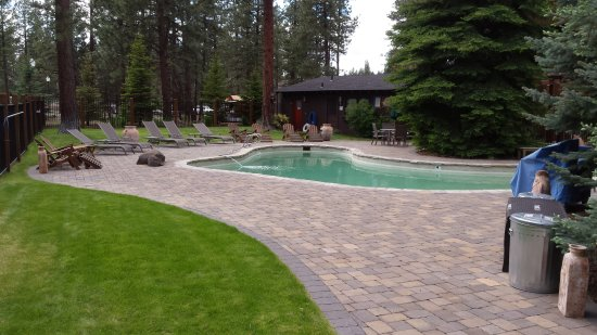 Five Pine Lodge & Spa: Pool area