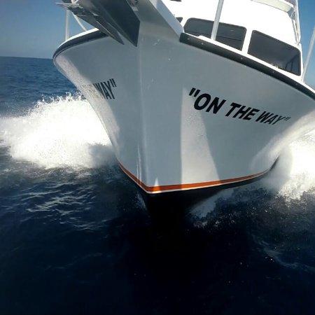 Catamaran Getaway