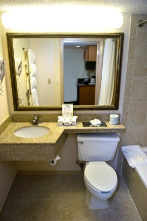 Holiday Inn Express Miami-Hialeah (Miami Lakes): Guest Bathroom