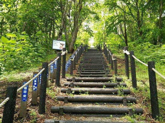 Akabira, Japan: ズリ山階段 ズリ山展望台