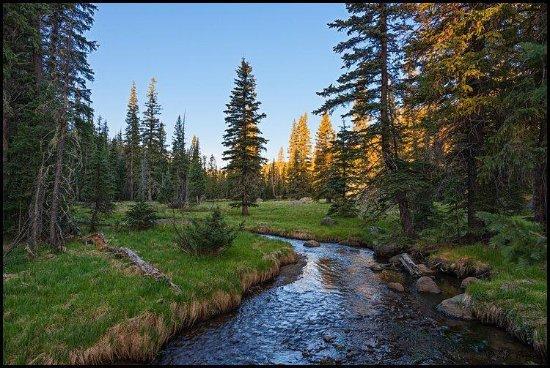 Pine Top-Lakeside, Az Places To Eat On Christmas 2020 Pinetop Lakeside 2020: Best of Pinetop Lakeside, AZ Tourism