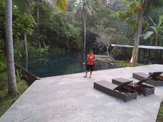 Kayumanis Ubud Private Villa & Spa: Main pool at Kayu Manis Ubud
